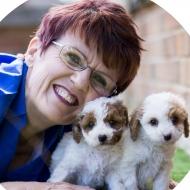 Waratah Puppies Pty Ltd